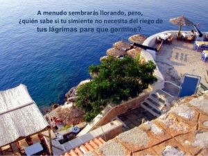 2 Cronicas 7-14